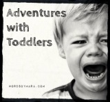The Brink of Insanity – Parenting a Toddler