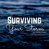 How Do You Survive The Storm?