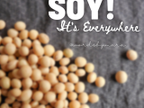 Soy in Everything
